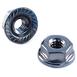 1/4-20 Hex Serrated Flange Nuts 18-8 / 304 Stainless Steel